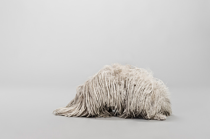 exposition woof Pablo Axpe